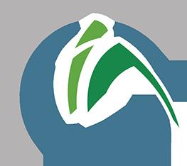 OIA - Logo Graphic